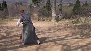 M. Wu Nanfang & Shaolin Kung Fu