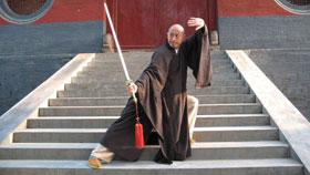 M. Wu Nanfang & Shaolin (Photos)