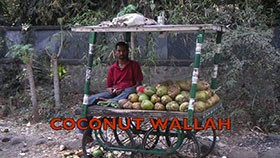 Coconut Wallah